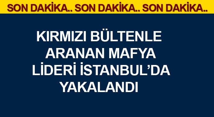 Son Dakika: Kırmızın bültenle aranan mafya lideri İstanbulda yakalandı!