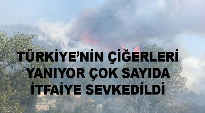 Türkiye'nin ciğerleri yanıyor! Çok sayıda itfaiye sevkedilmesine rağmen...