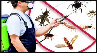 Böceklerden Kurtulmanın Adresi
