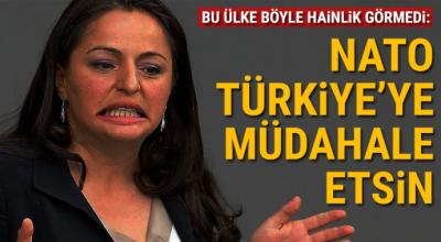 Türk kökenli Alman vekil Sevim Dağdelen, NATO'yu Türkiye'ye müdahaleye çağırdı